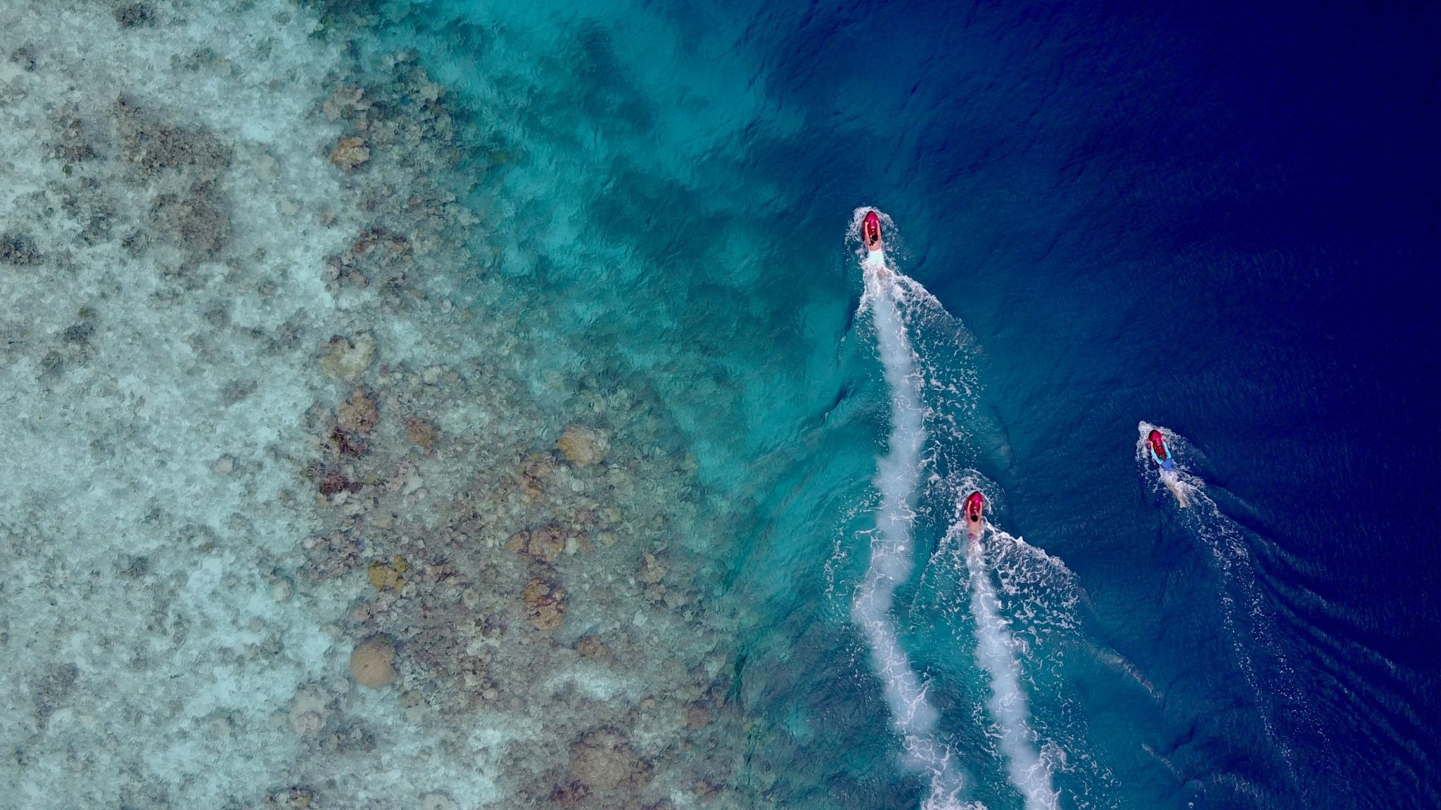 Maldives Dive and Watersports